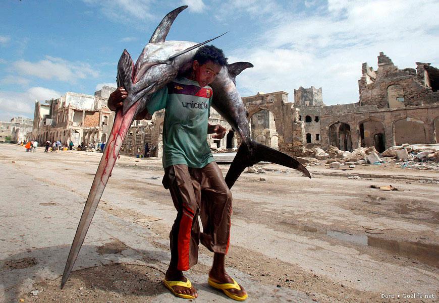 Мальчик несет рыбу-меч на рынке