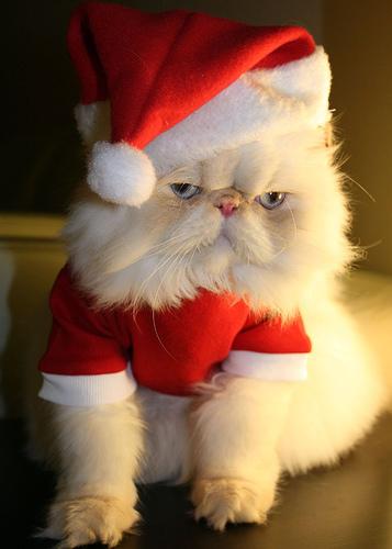 Грустный Дед Мороз