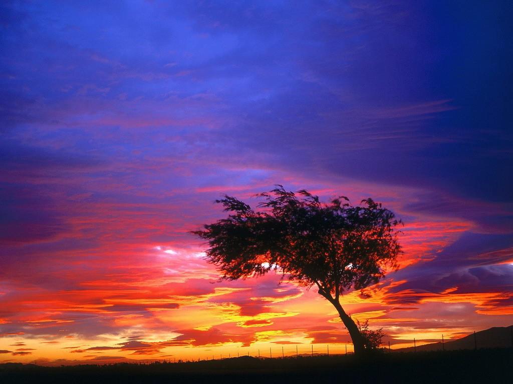 Волшебный закат