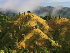 Холмы Бандарбана — округа на юго-востоке Бангладеш