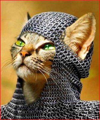 Рыцарь круглого лотка
