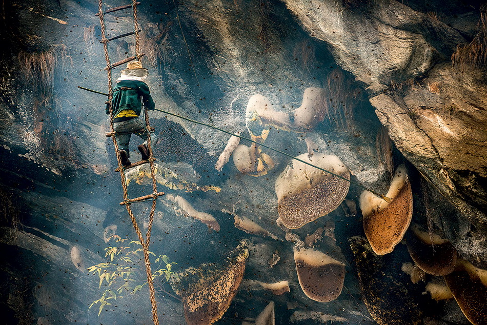 Cборщики меда диких пчел в Непале