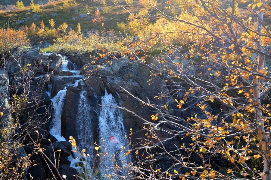 Водопад вид сквозь листву