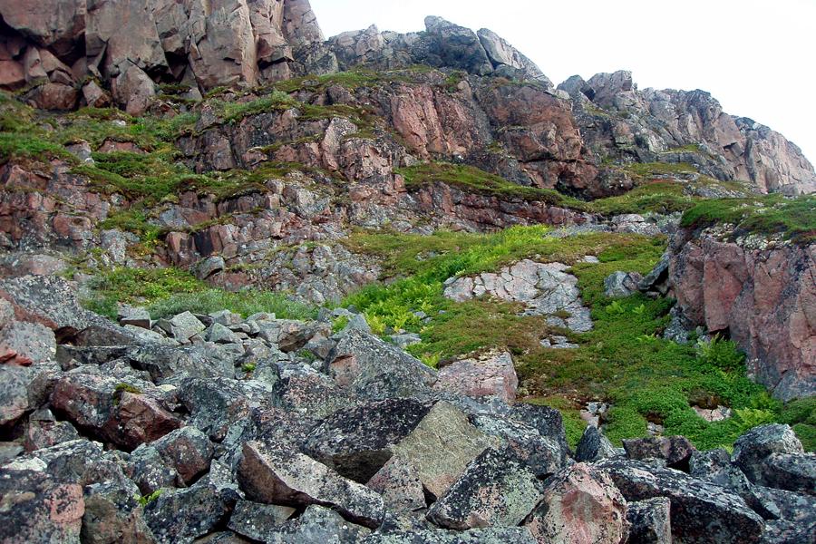 Каменистый склон