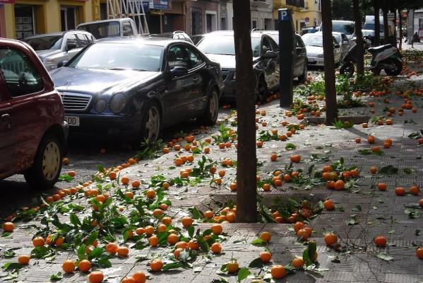 Вот так падают апельсины
