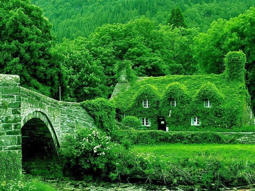 Экологически чистый домик в Англии.