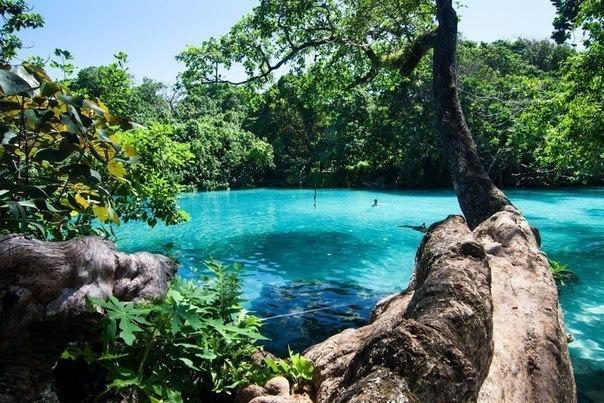 Голубая лагуна, Ямайка