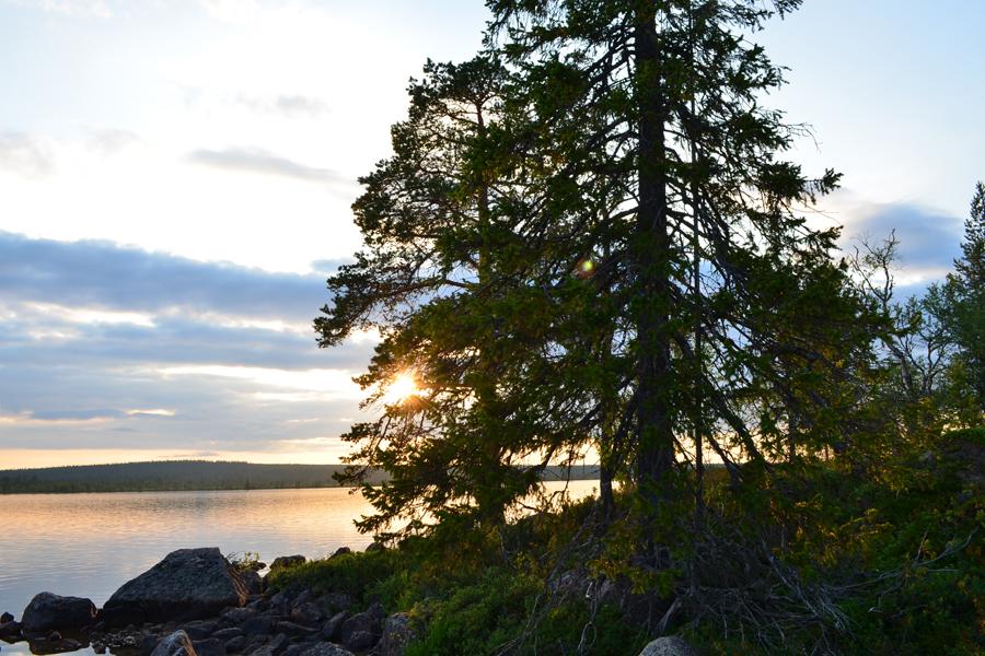 Летняя ночь (в Полярный день) на озере Килмыкъявр