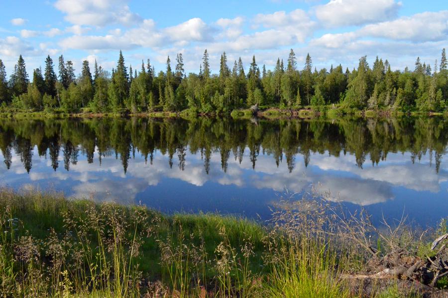 Небо в реке Поной