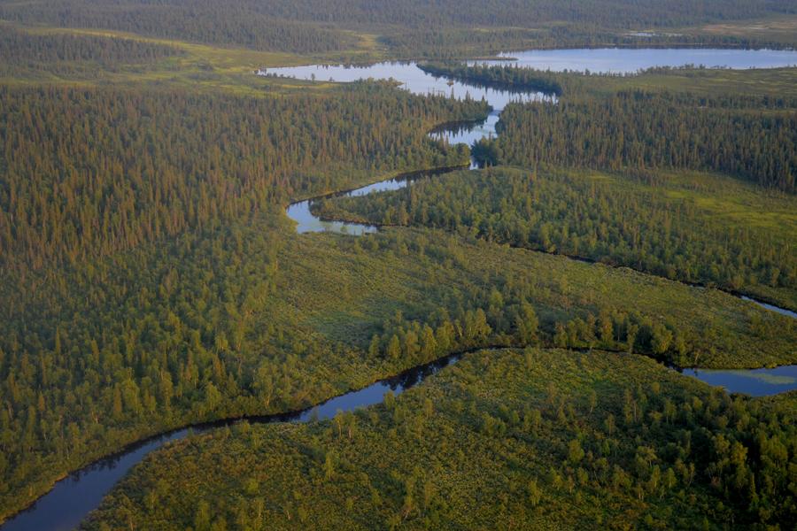 Река Йоканьга, вид из  вертолета