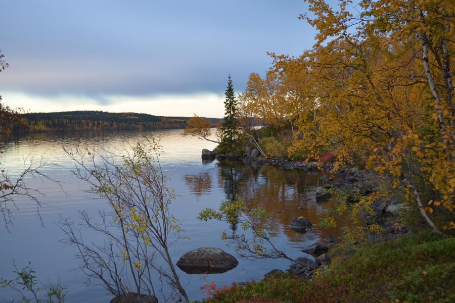Темнеет золото листвы - река Тулома