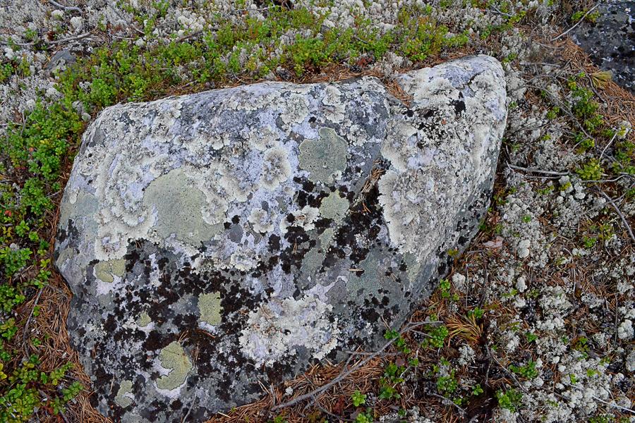 Узоры на камнях