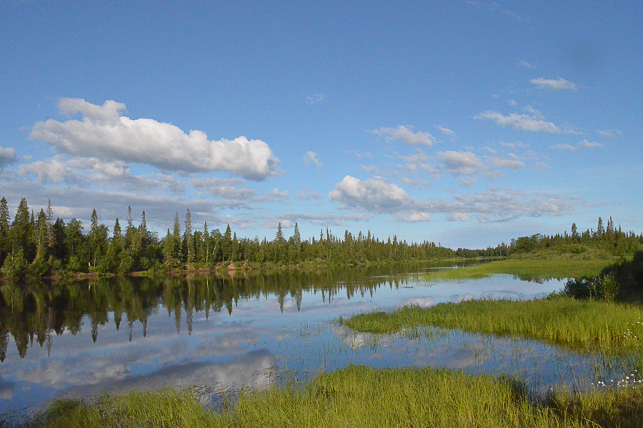 река Поной - ясный день