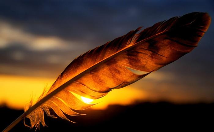 Огненное перо заката