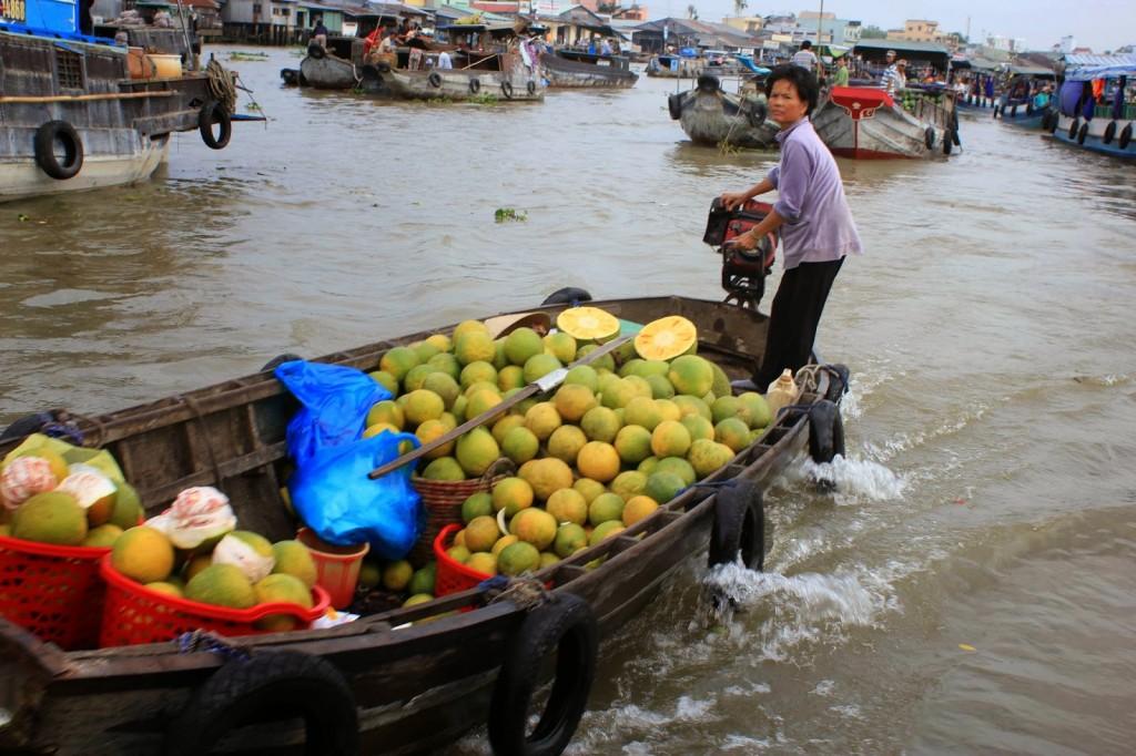 вьетнам 16 меконга