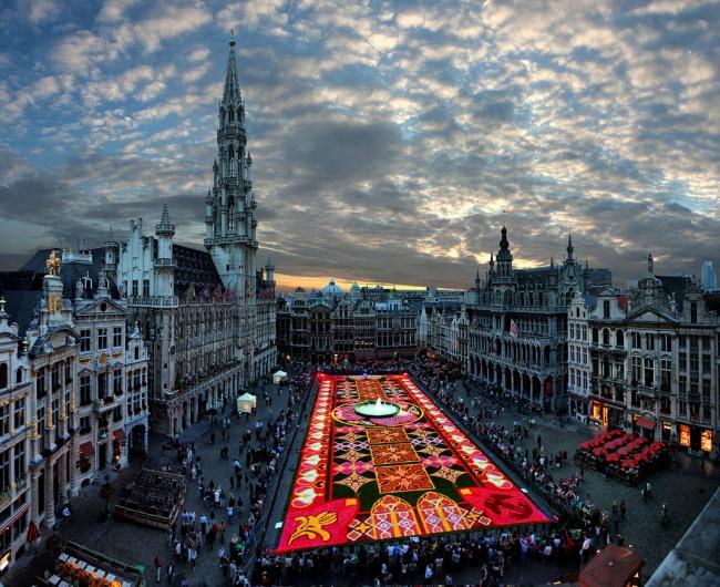 239 Цветочный ковер в Брюсселе