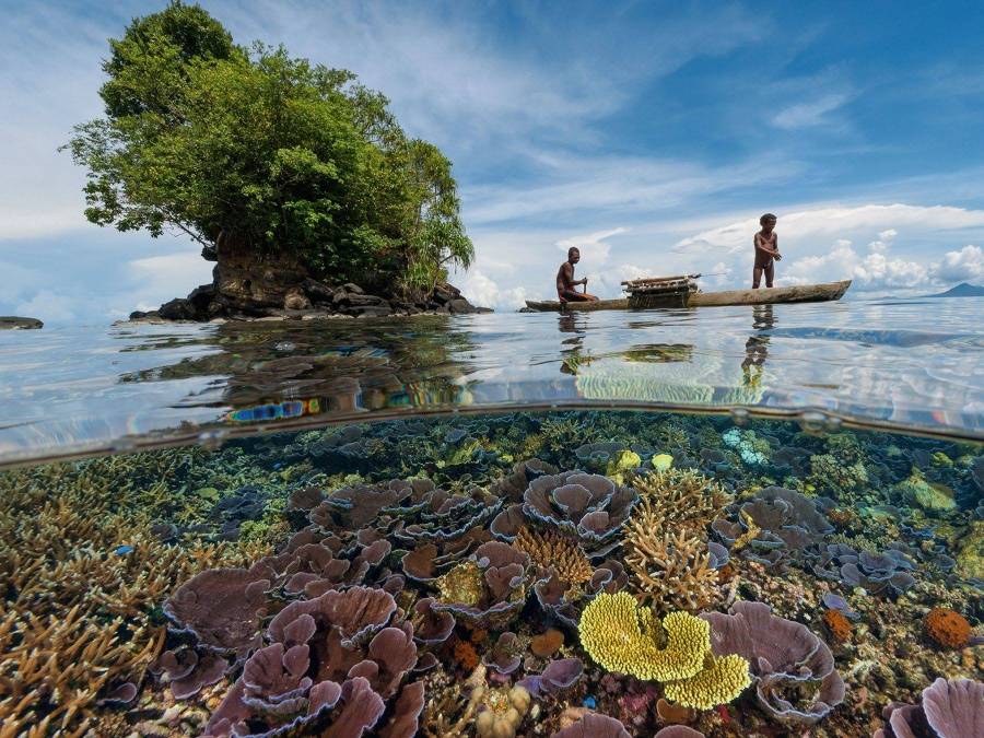 257 Кристально чистая вода у берегов Папуа