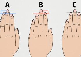 Что расскажет нам длина пальцев