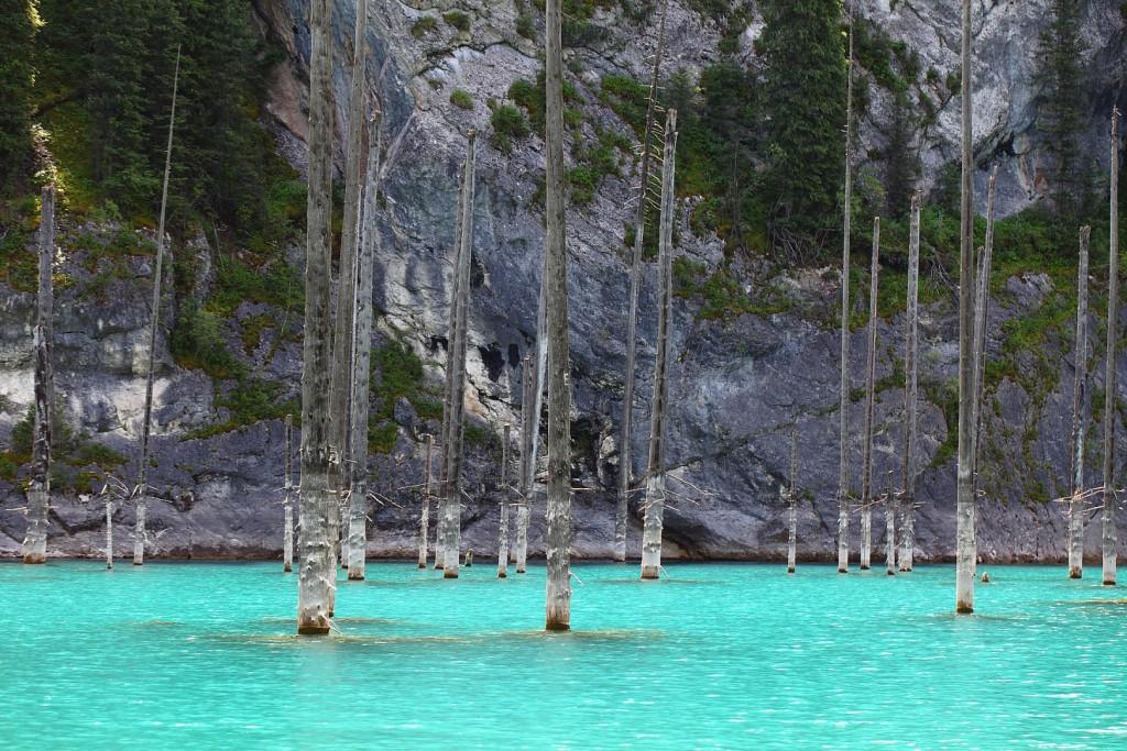 Казахстан озеро Каинды фото