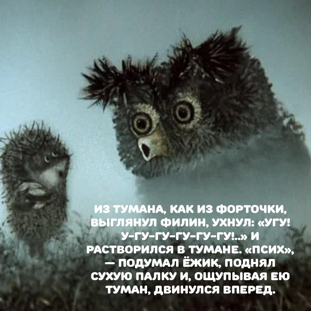 ежик в тумане цитаты с картинками красивейшая достопримечательность