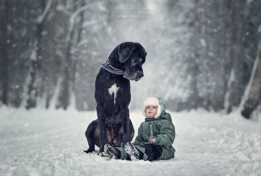 Энди Селиверстов дети и собаки